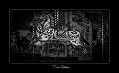 Life is just a Carousel (timgoodacre) Tags: steam steamengine engine machine history 1900s blackwhite blackandwhite black monochrome mono carousel fairground horse woodenhorse fairgroundride