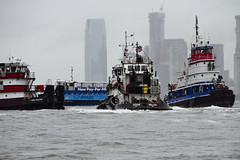 r_180909274_beat0075_a (Mitch Waxman) Tags: 2018greatnorthrivertugboatrace hudsonriver manhattan tugboat workingharborcommittee newyork