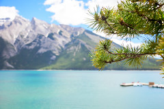 Lake Minnewanka (Sid's Corner) Tags: green canada canadianrockies rockies nature natureaddict nationalgeographic nationalgeographicworldwide ngc northamerica blue adventure schoksi schoksiphotography scenery nikond800 americas d800 flickraward flickrcentral flickrgallery flickrawardgallery picoftheday landscape landscapes lake lakes paradise travel tripofalifetime viewpoint nationalparks nationalpark mountain mountains naturephotography banff banffnationalpark minnewanka lakeminnewanka jetty boardwalk peace