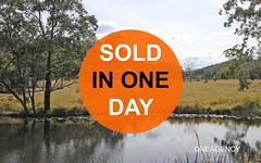 Lot 42 Spring Hill Road, Dondingalong NSW