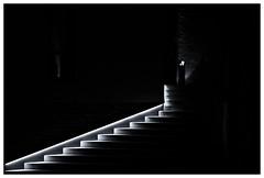 Light Line (RadarO´Reilly) Tags: schwerte nrw germany treppe stairs nacht night sw schwarzweis bw blackwhite blanconegro monochrome noiretblanc zwartwit