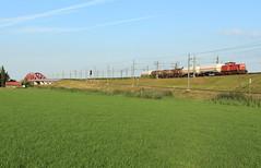 DB Cargo 6416 @ Hattemerbroek (Sicco Dierdorp) Tags: dbc db cargo serie6400 ketelwagen keteltrein unitcargo onnen kijfhoek zwolle hanzeboog ijsselbrug ijssel hattem hattemerbroek amersfoort wezep hanzelijn