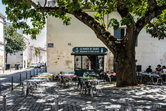 Under the tree (ericbaygon) Tags: tree restaurant resto crabe terrasse chaise rochelle france nikon d750 fx deck patio seafood crab