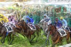 salida caballos - copa de oro - donostia (Antonio-González) Tags: hipodromo donostia sansebastian caballos carrera horses race racecourse