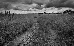 Harp Inn, On! (Rob Pitt) Tags: clouds wirral river dee neston summer rob pitt uk england sky overcast landscape a7rii canon 1740 f4 l cracked mud path blackwhite