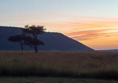 Sunrize at Olllololo camp (odileva) Tags: sunrise oloolologate paysage june kenia masaimaranp nature transmara riftvalleyprovince kenya ke