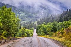 Go Into the Mist (Marsha Kay Photos) Tags: colorado mist mountains trees pines rainy misty landscape road passage