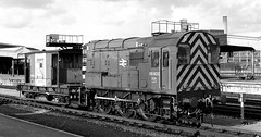"08800 Bristol TM f271  14 Mar  1985 Steve Widdowson  432 (50008""thunderer"") Tags: 08800 bristol shunter tm temple meads"