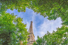 Paris, France - 6 (Dhina A) Tags: sony a7rii ilce7rm2 a7r2 a7r variotessar t fe 1635mm f4 za oss sonyfe1635mmf4 sel1635z tour holiday trip france eiffel tower