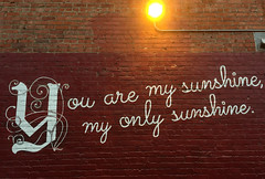 You are my sunshine, my only sunshine. (david ross smith) Tags: davidrosssmith drs berkeley california sanfranciscobayarea eastbay messages message downtownberkeley text words youaremysunshine myonlysunshine phrase bricks wall restaurant light letters