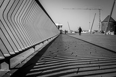 melancolia in settembre / get down make lines (Özgür Gürgey) Tags: 2016 35mm bw baumwall d750 hafen hamburg nikon samyang architecture depth harbor lines railings shadow street germany