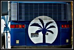 CaliBound (VegasBnR) Tags: nikon cali california sigma geo gimp vegasbnr vegas bus sign classic freeway freedom palmtree palm