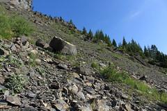 en route pour l'Au de Mex (bulbocode909) Tags: valais suisse mex montagnes nature rochers paysages arbres forêts vert bleu