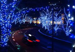 Tokyo blues (DameBoudicca) Tags: tokyo tokio 東京 japan nippon nihon 日本 japón japon giappone roppongi 六本木 tokyomidtown 東京ミッドタウン akasaka 赤坂 minato 港区 night natt nacht notte nuit noche 夜 tree träd baum albero árbol arbre 木