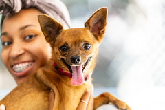 Apollo15Sep2018105.jpg (fredstrobel) Tags: dogs pawsatanta pets atlanta animals usa ga places pawsdogs decatur georgia unitedstates us