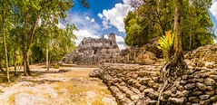 Feeling like Indiana Jones. (catrall) Tags: mexico yucatan campeche becan temple temples ruin maya mayan culture architecture feeling indianajones indiana jones nikon d750 fx sigma sigmalens 24105 march 2018 stones stone wood tree trees forest