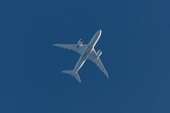 TUI G-TUIF 787 EGCC 15.09.2018 (JAP_Aviation) Tags: 000 15092018 19 19072018 787 aviation by716 boeing dreamliner gtuif glaema man manchesterairport planes tui thomsonairways