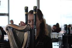 Guinness Storehouse (SergioBarbieri) Tags: guinness dublino birrificio arpa