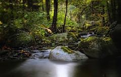 Herbst im Okertal - autumn in the Oker valley (huetteberg) Tags: herbst okertal niedersachsen nationalpark natur harz huetteberg landschaft fluss felsen wasser wald deutschland bach