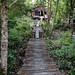 Agats walkway