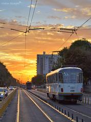3383 sunset (VictorSZi) Tags: romania sunset apus transport tram bucharest bucuresti september septembrie nikon nikond3100 ratb stb tatra tatrat4r drumultaberei