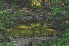 The Still Pond (Paul B0udreau) Tags: nikkor50mm18 photoshop canada ontario paulboudreauphotography niagara d5100 nikon nikond5100 raw layer grimsby texture