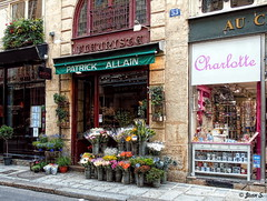 Charlotte et le fleuriste (Jean S..) Tags: boutique store flowers street bloom outdoors sidewalk doors windows