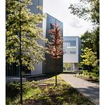 Conservatoire à Rayonnement Départemental Paris-Saclay thumbnail