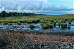 It's Somewhere Out There (raymondclarkeimages) Tags: raymondclarkeimages 8one8studios rci usa flickr google yahoo smugmug grass swamp river soil fujifilm mirrorless sky water land marsh x100f apsc field clouds xseries 23mm outdoor landscape