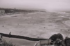 Ocean Beach, S.F. (sjnnyny) Tags: sutroheightspark oceanbeachsanfrancisco stevenj sjnnyny sonya6300 goldengatepark pacific panoramic scenic