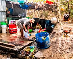 Hon May Rut, Phu Quoc, Vietnam (Kevin R Thornton) Tags: cleaning phuquoc galaxys8 asia travel people mobile samsung vietnam honmayrut thànhphốphúquốc tỉnhkiêngiang vn