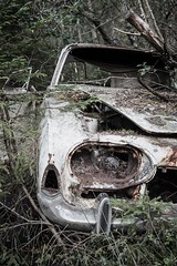 Buried Ford Taunus (maca59) Tags: rusted rust taunus ford forest old car