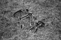 . (Joe Speedboat Morrison) Tags: prakticasupertl praktica 35mm film analog noiretblanc ilford