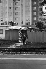 48080015 (Philipp Lillo) Tags: 35mm 35mmfilm filmphotografy streetphotografy analogphoto analogphotografy ilford filmisnotdead film