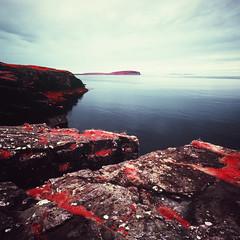 The Sound of Canna (Mark Rowell) Tags: infrared ir eir aerochrome kodak hasselblad 903 swc 6x6 120 mediumformat expired kilmory canna uist isleofrum skye scotland film