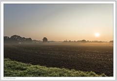 IMGP6706-Rahmen-kl (fredericfromage) Tags: morgen sonnenaufgang nebel bodennebel landschaft himmel felder bäume