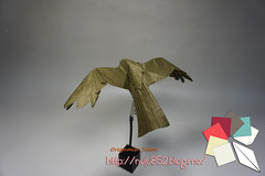 Black Kite (Rydos) Tags: paper origami art hanji koreanpaper korean origamist koreanorigamist paperfold fold folding paperfolding designed design model papermodel korea origamilst kamiya satoshi kamiyasatoshi blackkite black kite handmadehanji hand made color brown gold pearl mix bird eagle