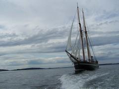 Segelskuta (tompa2) Tags: stockholmsskärgård segelfartyg hav vatten uppland