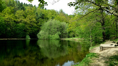 Place for a little break (Caledoniafan (Astrid)) Tags: pond nature natur teich wasser water landscape landschaft saxony sachsen sommer summer caledoniafan samsung samsunggalaxynote3