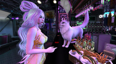 Me and Frida at the japanese CyberPunkBar (BEAUTY(influencer)) Tags: solafesta japanese chinese ay genus bento mocap mudskin {aii} jian neph1lim cyberpunkbar