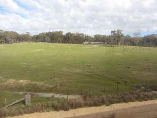 From the train: Castlemaine to Maldon.