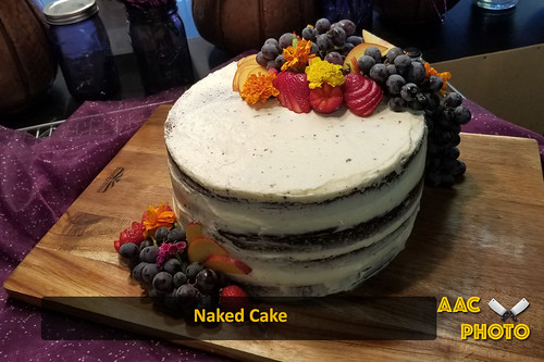 """Naked Cake • <a style=""""font-size:0.8em;"""" href=""""http://www.flickr.com/photos/159796538@N03/44594279742/"""" target=""""_blank"""">View on Flickr</a>"""