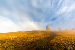 Дорога в осень #своифото, #пейзаж, #природа, #утро, #рассвет, #дерево, #натура, #восход, #sunrise, #nature, #tree, #Landscape, #sun, #туман, #лучи, #foggy, #природа, #небо, #небоголубое, #сониальфа, #сониа6000, #sonyalpha, #sonya6000, #natgeoru, #natgeoru (ЛеонидМаксименко) Tags: natgeorussia сониа6000 сониальфа пейзаж восход sonyalpha небоголубое утро sonya6000 лучи natgeoru foggy tree nature небо landscape природа натура дерево sun natgeoyourshot рассвет своифото туман sunrise осень золотаяосень autumn road дорога березка облака россия урал южныйурал уральскиегоры горы зорька