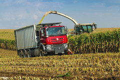 Corn Silage 2018 | CLAAS // TATRA (martin_king.photo) Tags: mais corn cornsilage maisfieber 2018harvestseason summerwork powerfull martin king photo machines strong agricultural greatday great czechrepublic welovefarming agriculturalmachinery farm workday working modernagriculture landwirtschaft martinkingphoto machine machinery field huge big sky agriculture tschechische republik power dynastyphotography lukaskralphotocz day fans work place harvester forage clouds inaction action worker eos new weather flickr tatra tatratrucks tatraphoenix tatraktor czechoslovakgroup fliegl flieglagrartechnik claas claasjaguar
