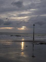 (Turbogirlie) Tags: borth borthbeach afonleri dyfiestuary cardiganbay ceredigion ceredigioncoast walescoastalpath walk1000miles seaside beachlife cambriancountryside exploredyfi ynyslas sand sea cliffs marinelife