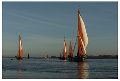 294A4566-Edit.jpg (merseamillsy) Tags: smack thamesbarge oystersmack barge colnebargematch sailing