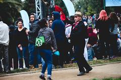 Fiesta Criolla 2018 (Municipalidad de Cerro Navia) Tags: fiesta criolla 2018 alcaldedecerronavia alcaldemaurotamayo alcaldeenterreno vecinos vecinas chile haitianos colombianos peruanos chilenos canon canon5dmarkii fiestacomunal color colores sonora5estrellas lostrukeros vikings5 felicidad direccióndecomunicacionesyrelacionespúblicas saltando bailando juegostipicos juegosinflables directores deporte cultura dideco transito secpla familia familiar tipicos tipico parquemapochopiniente la210 la2meme cerronavia cerronaviamerecemas cerronaviaestacambiando cerronavinos cerronavinas niños niñas