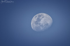 Wanderer of the sky (Gabriel Paladino Photography) Tags: moon poem luna poema zoom telezoom telephoto sky cielo gibosa iluminante gibbous atardecer canon gabrielpaladino eos 9000d 77d sigma 600mm 150600