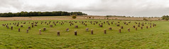 Woodhenge (Keith in Exeter) Tags: woodhenge neolithic circle archaeology site landscape grass field concrete markers tree woodland sky fence amesbury wiltshire uk photomerge