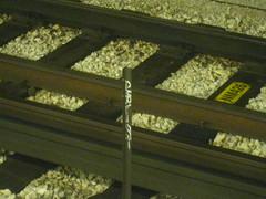 SIVEL (Billy Danze.) Tags: chicago graffiti sivel d30 xmen